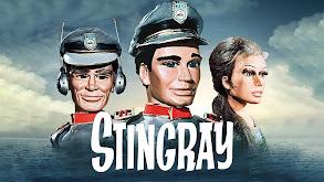 Stingray thumbnail