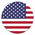 USA Flags Widget