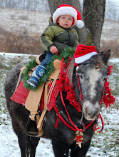 Photo: Wes is heralding the holiday season with sleigh bells ringing as he rides toward Christmas on Edgar Allan Pony.