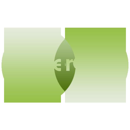 Mastercard Logo Green