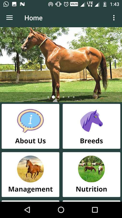 Infoequine by ICAR-NRCE- screenshot