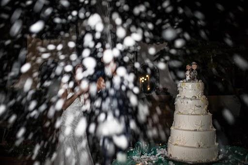 Wedding photographer Barbara Fabbri (fabbri). Photo of 14.09.2016