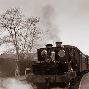 by Danny Vandeputte - Transportation Trains
