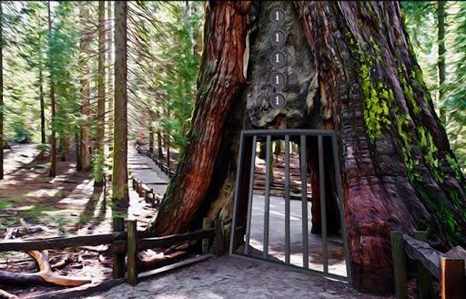 Escape Game National Park