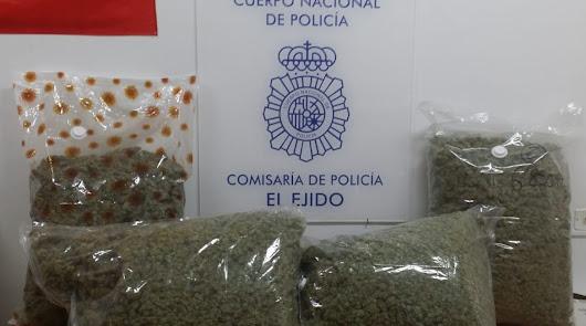 Detenidos con más de 29 kilos de marihuana en un control policial en Pampanico
