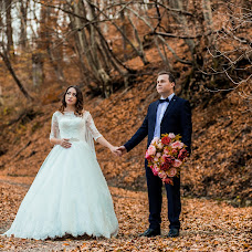 Wedding photographer Aleksey Zharkov (alexsmef). Photo of 18.01.2017