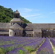 photo de Abbaye Notre Dame de Senanque (cisterciens)