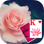 Solitaire Purple Rose Theme