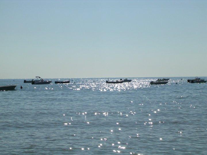 Riflessi argentei di mari1966