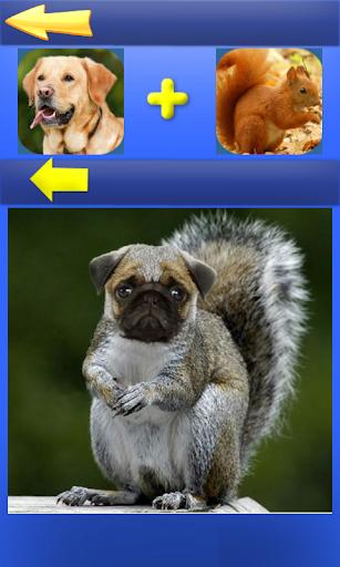 Morph Hybrid Animals for PC