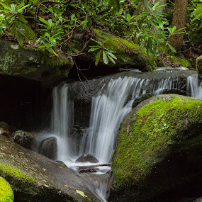 by Brook Kornegay - Landscapes Waterscapes ( water, stream, waterfall, smoky mountains,  )