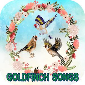 GOLDFINCH SONGS