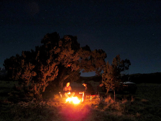 Camp in Coconino National Forest