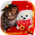 Valentine Kitty live wallpaper icon
