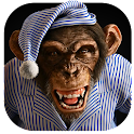 Angry Monkey 3D Live Wallpaper icon