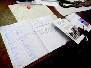 Photo: South Sudanese refugees learning English in Mira House Equatoria-maakunnan tukiyhdistys Suomessa ry.