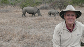 South Africa -- On Safari! thumbnail