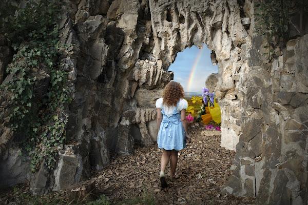 Seguendo Alice di Dariagufo