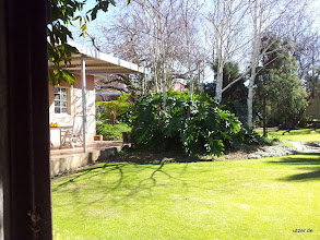 Photo: Nochmal der Garten im Guesthouse.