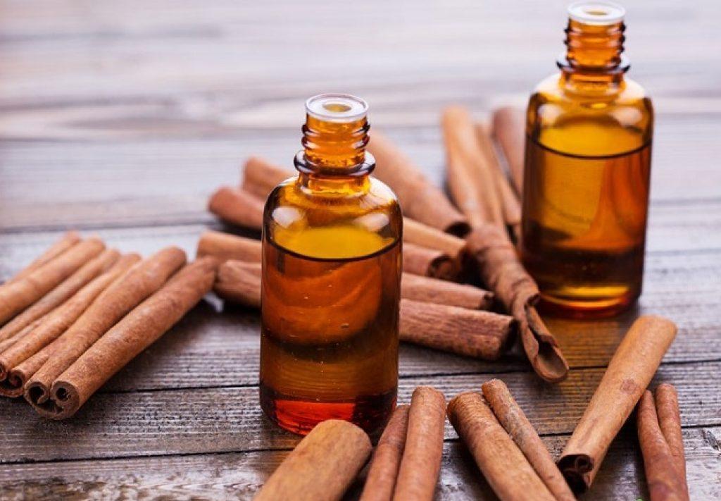 Những công dụng đặc biệt của tinh dầu quế bạn chưa biết