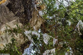 Photo: Il disgelo