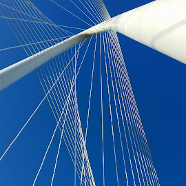 The Arch by Michael McMurray - Instagram & Mobile Android ( curve, arch, dallas, cable, suspension, curved, margaret hunt hill bridge, suspended )