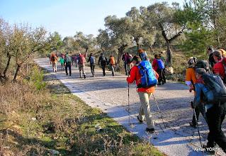Photo: Kargıcak Köyü'ne 2 Km. mesafeden yürüyüşe başlıyoruz. - Milas Karya(Karia) Yolu 7. Etabı - 29.11.2014