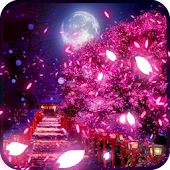 CherryBlossom HD LiveWallpaper