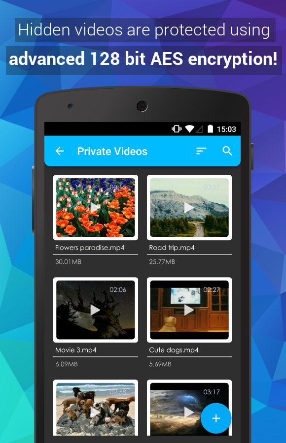 Video Locker Pro Screenshot 1