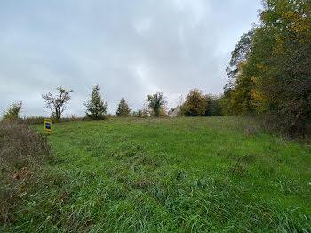 terrain à Saint-Bohaire (41)