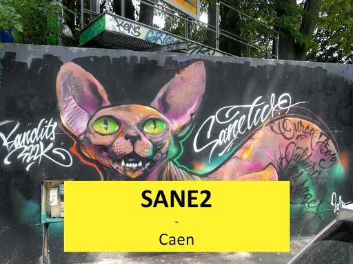Sane2