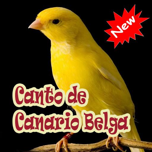 CANOROS PASSAROS BAIXAR DE CANTOS