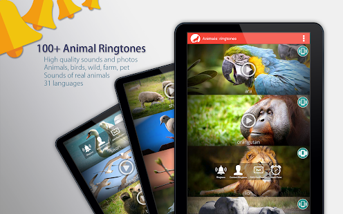 App Animals: Ringtones APK for Windows Phone