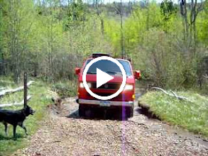 Video: First creek crossing. Here Joel re-enacts our historic crossing