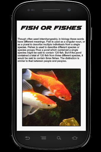 魚類信息預訂