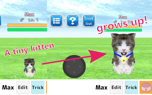 Cat Sim 22 {cheat|hack|gameplay|apk mod|resources generator} 1