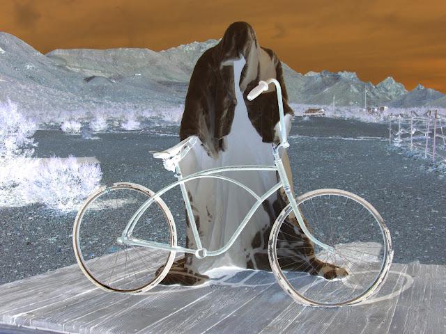 Negative, Ghost Rider