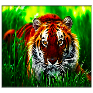 download tiger live wallpaper for pc
