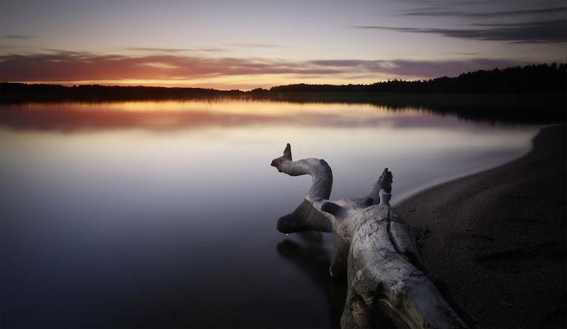 Svezia al Tramonto di Marcedusano