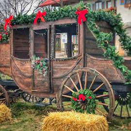 Christmas coach by Patti Pappas - Transportation Other ( michigan, winter, coach, snow, christmas, brown, wreath, frankenmuth )