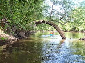 Photo: Passaic River