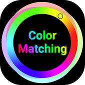 Color Matching Colour Match Brain Game