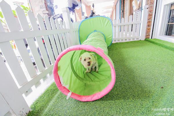 高雄左營美食│DoGu狗民小學~有草地可讓狗狗玩耍及寵物餐