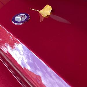 Gクラス W463のカスタム事例画像 峰不二子さんの2020年11月24日12:35の投稿