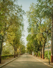 Photo: Streets inside Campus