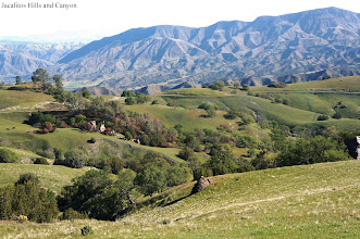 Photo: View from the Parkfield Grade: Jacalitos Hills overlooking Jacalitos Canyon