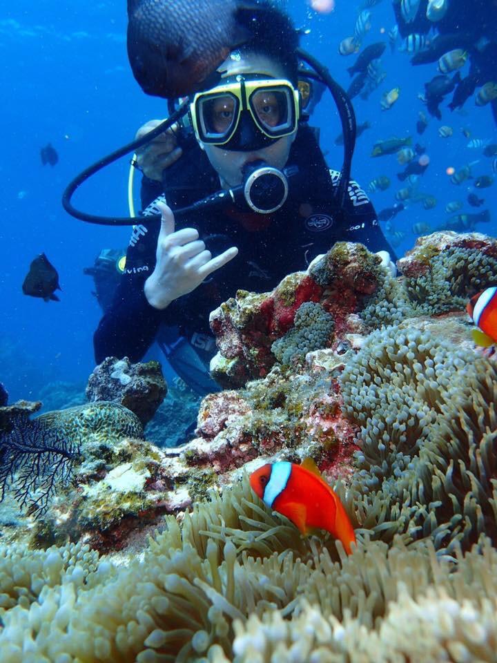 綠島潛水看小丑魚