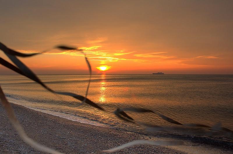 il vento soffiava sul mare di Naldina Fornasari