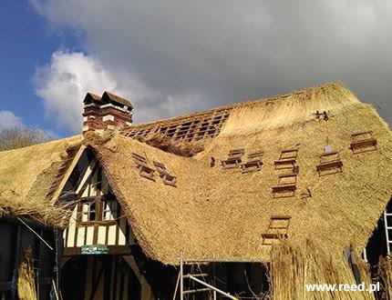 Proces kładzenia trzciny na dachu