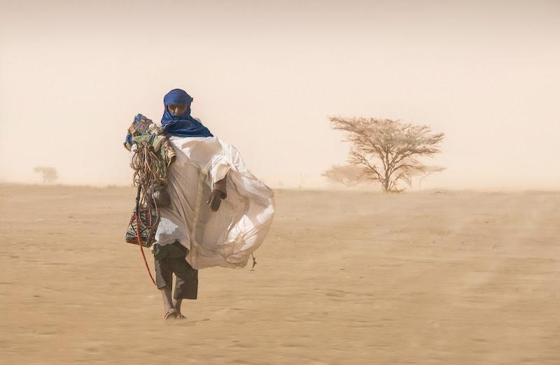 .....Nel suo mondo di sabbia e vento di Pensatore